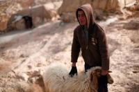 Sha'eb el Buttom, January 2012. Photo: Tomer Appelbaum