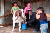 Jalal of Comet-ME practicing goat milking. Tuba, February 2010. Photo: Eduardo Soteras